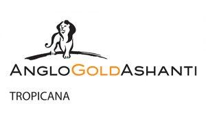 2020-FAIR-Sponsor-_0015_Anglo Gold logo